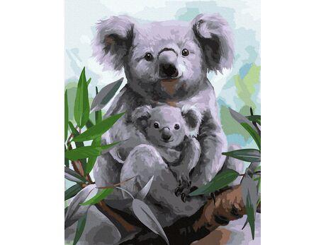Koalas paint by numbers