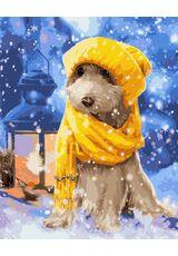 Snow doggy