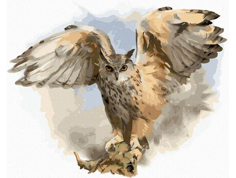 Owl spread wings paint by numbers