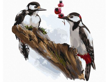 Great spotted woodpecker paint by numbers
