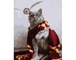 Gryffindor's cat