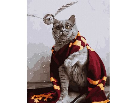 Gryffindor's cat paint by numbers