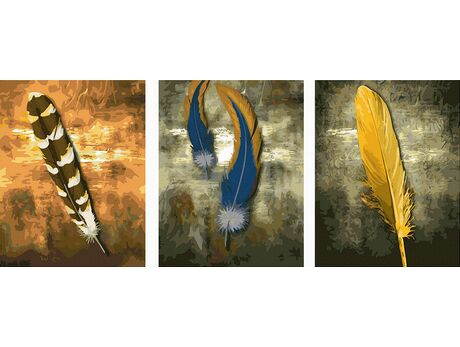 Variety of feathers paint by numbers