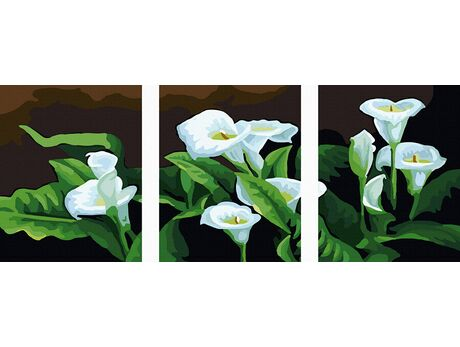 White Calla paint by numbers