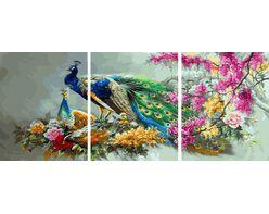 Multicolored peacock family
