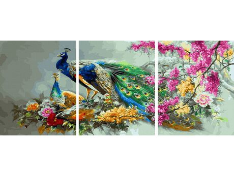Multicolored peacock family paint by numbers