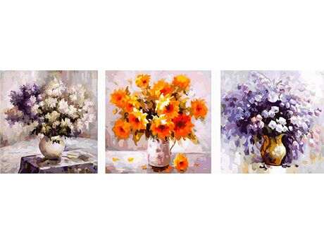 Set of flowers paint by numbers
